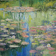 Water Lily Pond Print by Michael Creese