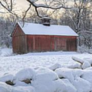 Weathering Winter Print by Bill Wakeley