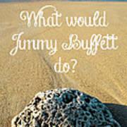 What Would Jimmy Buffett Do Print by Edward Fielding
