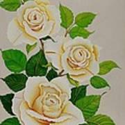 White Roses - Vertical Print by Carol Sabo