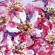Wild Rose Print by Zaira Dzhaubaeva