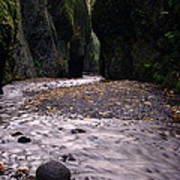 Winding Through Oneonta  Gorge Print by Jeff Swan