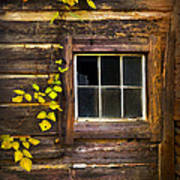 Window To The Soul Print by Debra and Dave Vanderlaan