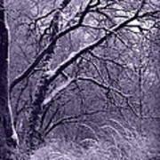 Winter In Purple Print by Carol Groenen