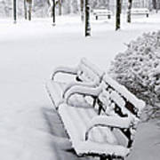 Winter Park With Benches Print by Elena Elisseeva