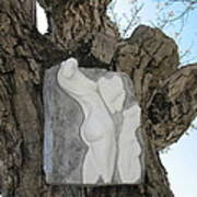 Woman Torso - Cast 1 Print by Flow Fitzgerald