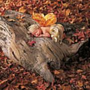 Woodland Fairy Print by Anne Geddes