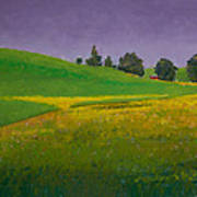 A Sliver Of Canola Print by David Patterson