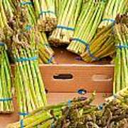 Asparagus Print by Tom Gowanlock