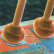 Coloured Sem Of Integrated Circuit Micro-wires. Print by Power And Syred