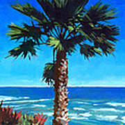 Fan Palm - Diamond Head Print by Douglas Simonson