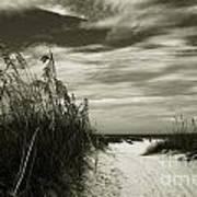 Let's Go To The Beach Print by Susanne Van Hulst