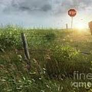Old Country Fence On The Prairies Print by Sandra Cunningham