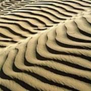 Rippled Sand Dunes Print by Tek Image