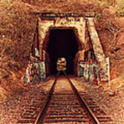 Train Tunnel At The Muir Trestle In Martinez California . 7d10220 Print by Wingsdomain Art and Photography