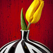 Yellow Tulip In Striped Vase Print by Garry Gay