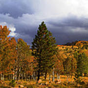 Rocky Mountain Fall Print by Mark Smith