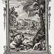 1731 Johann Scheuchzer Creation 6th Day Print by Paul D Stewart