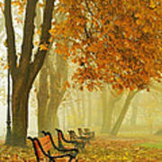 Red Benches In The Park Print by Jaroslaw Grudzinski