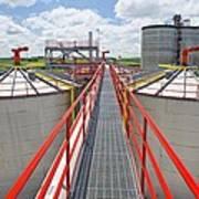 Corn Ethanol Processing Plant Print by David Nunuk