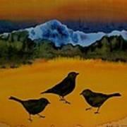 3 Blackbirds Print by Carolyn Doe