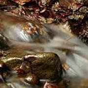 River Print by Odon Czintos