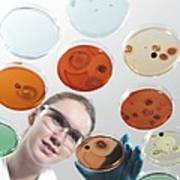 Microbiology Research Print by Tek Image