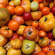 A Variety Of Fresh Tomatoes - 5d17812-long Print by Wingsdomain Art and Photography