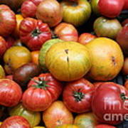 A Variety Of Fresh Tomatoes - 5d17840 Print by Wingsdomain Art and Photography