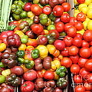 A Variety Of Fresh Tomatoes And Celeries - 5d17901 Print by Wingsdomain Art and Photography