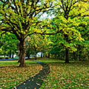 A Walk In The Park Print by Dan Mihai