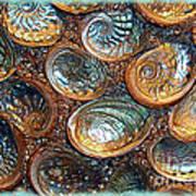 Abalones Print by Judi Bagwell