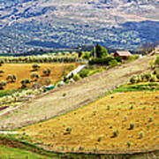 Andalusia Countryside Panorama Print by Artur Bogacki