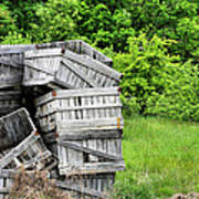 Apple Crates Print by JC Findley