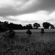 Approaching Storm Over Tree Farm Print by Jan W Faul