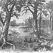 Arkansas: Sunken Lands Print by Granger