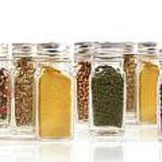 Assorted Spice Bottles Isolated On White Print by Sandra Cunningham