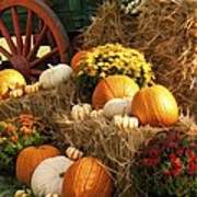 Autumn Bounty Print by Kathy Clark