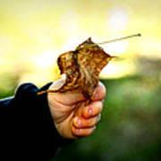 Autumn In Hand Print by Kelly Hazel