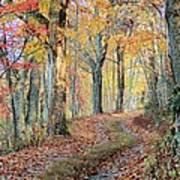 Autumn Lane Print by Heavens View Photography