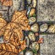 Autumn Texture Print by Wayne Sherriff