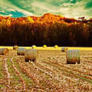 Bales Of Autumn Print by Bill Tiepelman