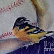 Baltimore Orioles Print by AE Hansen