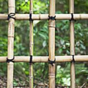 Bamboo Fence Detail Meiji Jingu Shrine Print by Bryan Mullennix