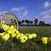 Basket Of Golf Balls Print by Skip Nall