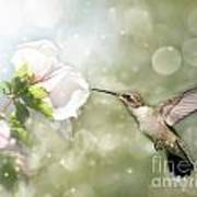 Beauty In Flight Print by Sari ONeal
