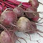 Beets Me Print by Denise Pohl