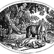 Bewick: Man And Bear Print by Granger