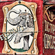 Big Top Elephants Print by Kristin Elmquist