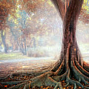 Big Tree Root Print by Zu Sanchez Photography